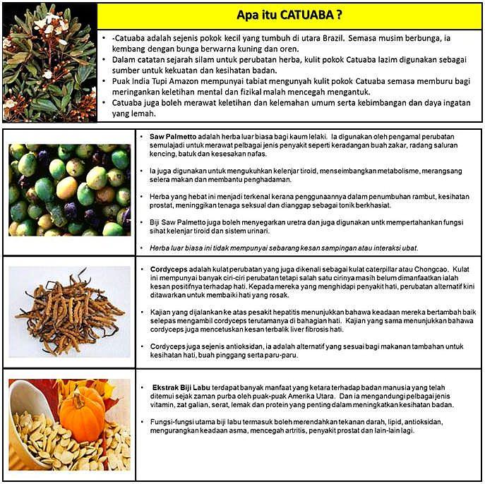 Catuaba (4)
